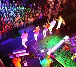 Best Live Corporate Bands In Melbourne